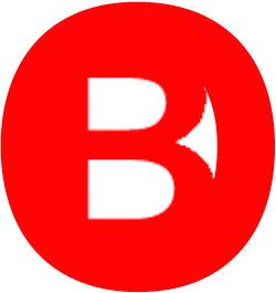 logo lastone